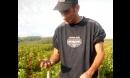 La récolte 2012 est en marche!